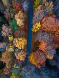 Aerial view over autumn forest Royalty Free Stock Photos