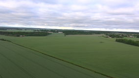 Aerial view over farmland in sweden during sunrise stock video
