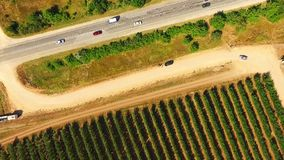 Aerial View Over Fruit Orchards And Road stock video footage