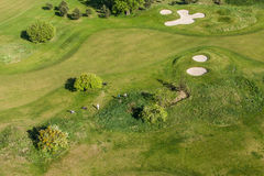 Aerial view over golf field Stock Photos