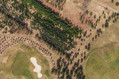 Aerial view over golf field  and small forest Stock Photography