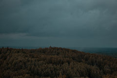 Aerial view over the green forest in evening. Cloudy mystery. Landscapes of Latvia. Royalty Free Stock Photos