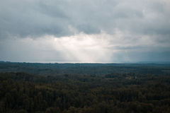 Aerial view over the green forest in evening. Cloudy mystery. Landscapes of Latvia. Stock Photo