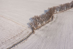 Aerial view  over the harvest fields in winter Royalty Free Stock Photo