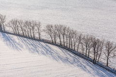 Aerial view  over the harvest fields in winter Royalty Free Stock Photos