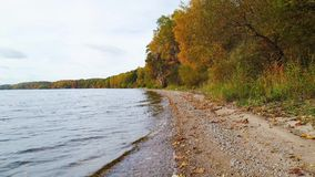 Flight over lake and forest at autumn stock video footage
