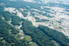 Aerial View Over Letea Forest in the Danube Delta, Romania. The forest grown on Maritime Salty Sand Royalty Free Stock Image