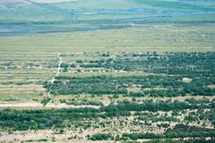Aerial View Over Letea Forest in the Danube Delta, Romania. The forest grown on Maritime Salty Sand Stock Image