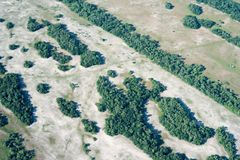 Aerial View Over Letea Forest in the Danube Delta, Romania. The forest grown on Maritime Salty Sand Royalty Free Stock Photos