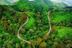 Aerial view over mountain road going through forest royalty free stock images