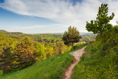 Aerial view over path in Kurortny park Royalty Free Stock Photography