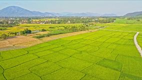 Aerial View Over Rice and Crop Fields with Roads by Village. Aerial view over rice and crop fields with country roads near farmer village against large mountain stock video footage