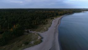 Flying over a sand beach on the island of Gotland in Sweden during autumn. Aerial view over a sand beach and calm clear ocean stock video footage