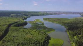 Aerial view over sunny lake surrounded by pine tree forest near town. Clip. During sunny summer day. Top view of the. Forest lake near the town stock footage