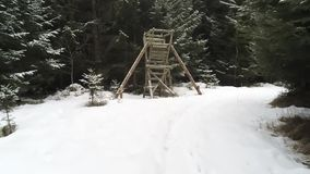 Walk in a snowed forrest to a hunting perch in winter season in bavaria stock footage
