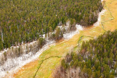 Aerial view overhand of autumn forest meadow and creek. Royalty Free Stock Images