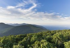 Windswept Trees in the Catskill Mountains of New York. An aerial view from Overlook Mountain in the eastern Catskill Mountains to the north stock photos