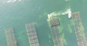 Aerial view of an oyster field in the south of France stock video footage