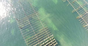 Aerial view of an oyster field in the south of France stock footage