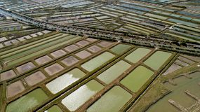 Aerial view of oysters farms in Marennes, Charente Maritime. France stock photo