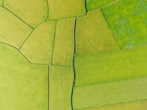 Aerial View of Paddy Field from Dongshan Township, Yilan, Taiwan. Shot in Dongshan Township, Yilan, Taiwan royalty free stock photos