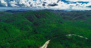 Aerial view of palms forest, road and mountain on the Siargao island. Philippines.  stock photography