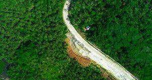 Aerial view of palms forest, road and mountain on the Siargao island. Philippines.  stock photos