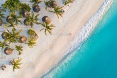 Aerial view of palms on the sandy beach of Indian Ocean at sunset. Aerial view of umbrellas, palms on the sandy beach of Indian Ocean at sunset. Summer holiday stock photography