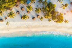 Aerial view of palms on the sandy beach of Indian Ocean at sunset. Aerial view of umbrellas, palms on the sandy beach of Indian Ocean at sunset. Summer holiday stock image
