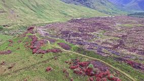Aerial view of the paradisal landscape of Glen Etive stock footage