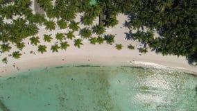 Aerial view of Paradise tropical island beach. Beachfront Punta Cana. stock video footage