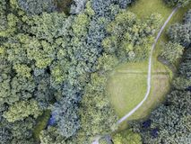Aerial view of a path through a clearing in the woods. Bird`s eye view of a path through a clearing in the woods. Shot from above with a drone Stock Photography