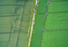 Aerial view of a path between two arable land with a car in the middle, taken at an abstract angle from a height of 100 metres. Made with drone Royalty Free Stock Photos