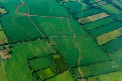 Aerial view of pattern of green cultivated fields on island of Roatan, Honduras Stock Photos