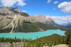 Aerial view of Peyto Lake in Banff National Park, Alberta, Canada Royalty Free Stock Image