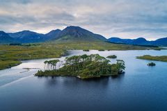 Aerial view of the Pine Trees Island in the Derryclare Lake. Galway county, Ireland royalty free stock image