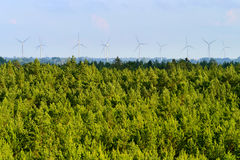 Aerial view of pinewood and wind turbines on the horizon. Stock Images