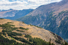 Aerial View of Plains between Pine Forests in Rocky Mountains Stock Images