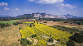 Aerial view of plantation field and mining site at mountain in s Stock Photography