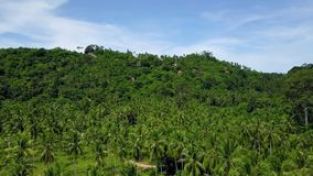 Aerial view of private secluded villas on tropical island in remote location among green palm trees. Shot with a DJI Mavic fps29,97 4k stock footage