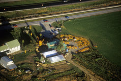 Aerial view of pumpkin patch on Scenic Route 100 in autumn in VT Royalty Free Stock Photography