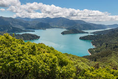 Aerial view of Queen Charlotte Sound in Marlborough Sounds Royalty Free Stock Photography