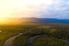 Aerial View of a Rainforest in Brazil Stock Photography