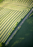 Aerial View : Raod along a field. With cultivation lines Royalty Free Stock Photos