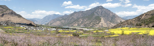 Aerial view of rapeseed flowers around ShiGu village near Lijiang . ShiGu is in Yunnan, China, and was part of the South Silk Road Royalty Free Stock Photo
