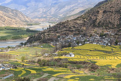 Aerial view of rapeseed flowers around ShiGu village near Lijiang . ShiGu is in Yunnan, China, and was part of the South Silk Road Stock Photo