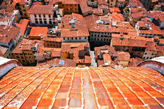 Aerial view of red roofs in Florence Stock Images