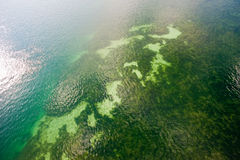 Aerial view of reef under sea Royalty Free Stock Photos