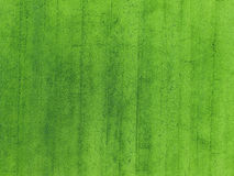 Aerial view of rice field Royalty Free Stock Image