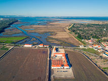 Aerial View Rice Fields Stock Photo